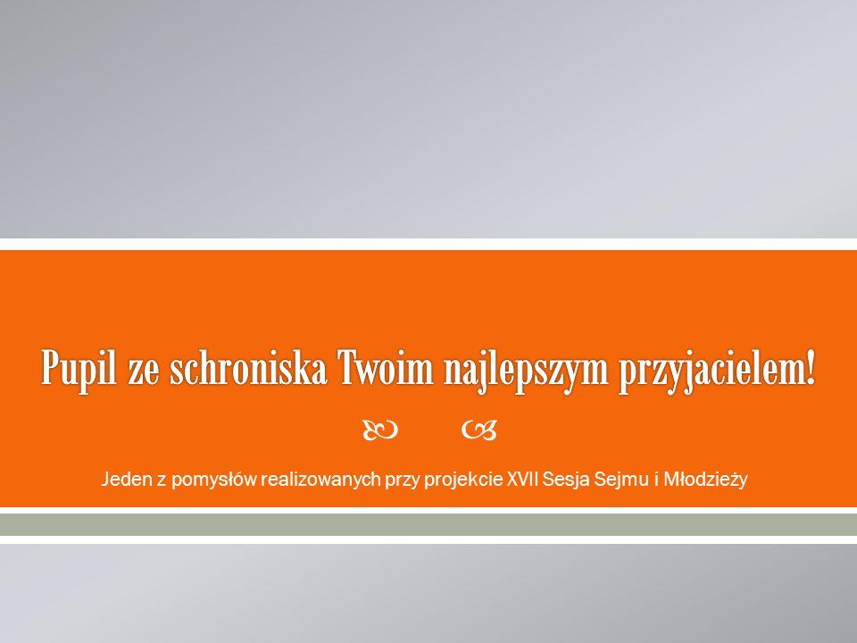 Jeden z pomysłów realizowanych przy projekcie XVII Sesja Sejmu i Młodzieży