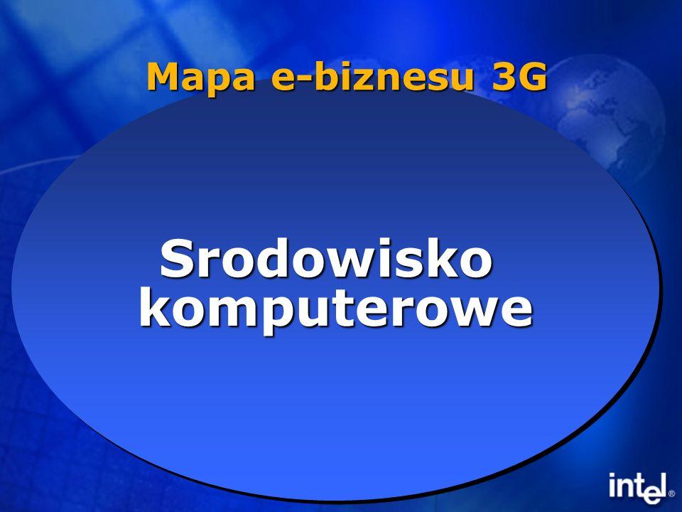 B2E B2P B2B B2B B2C ComputingEnvironmentComputingEnvironment SrodowiskokomputeroweSrodowiskokomputerowe Mapa e-biznesu 3G