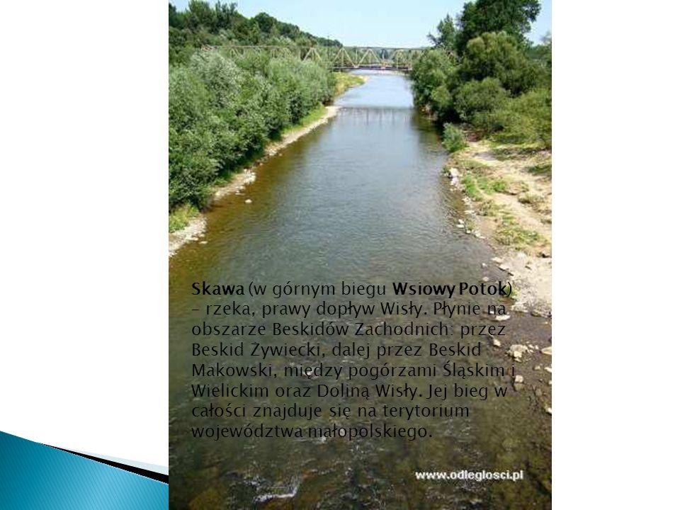 Skawa (w górnym biegu Wsiowy Potok) – rzeka, prawy dopływ Wisły. Płynie na obszarze Beskidów Zachodnich: przez Beskid Żywiecki, dalej przez Beskid Mak