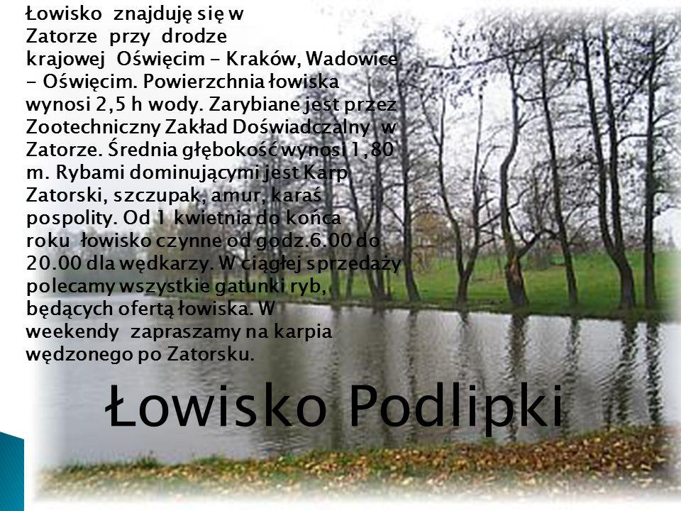 Łowisko znajduję się w Zatorze przy drodze krajowej Oświęcim - Kraków, Wadowice - Oświęcim. Powierzchnia łowiska wynosi 2,5 h wody. Zarybiane jest prz