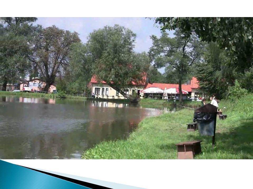 Łowisko Podolsze Łowisko Podolsze jest łowiskiem komercyjnym.