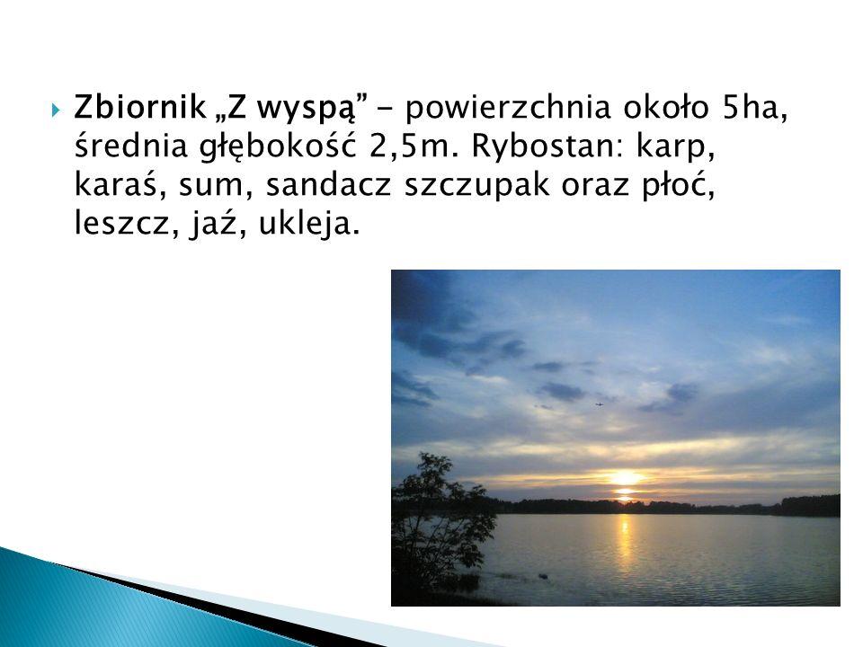 Zbiornik Z wyspą - powierzchnia około 5ha, średnia głębokość 2,5m. Rybostan: karp, karaś, sum, sandacz szczupak oraz płoć, leszcz, jaź, ukleja.