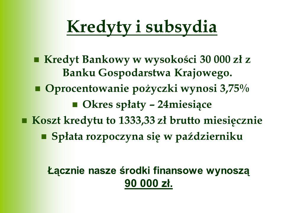 Kredyty i subsydia Kredyt Bankowy w wysokości 30 000 zł z Banku Gospodarstwa Krajowego. Oprocentowanie pożyczki wynosi 3,75% Okres spłaty – 24miesiące