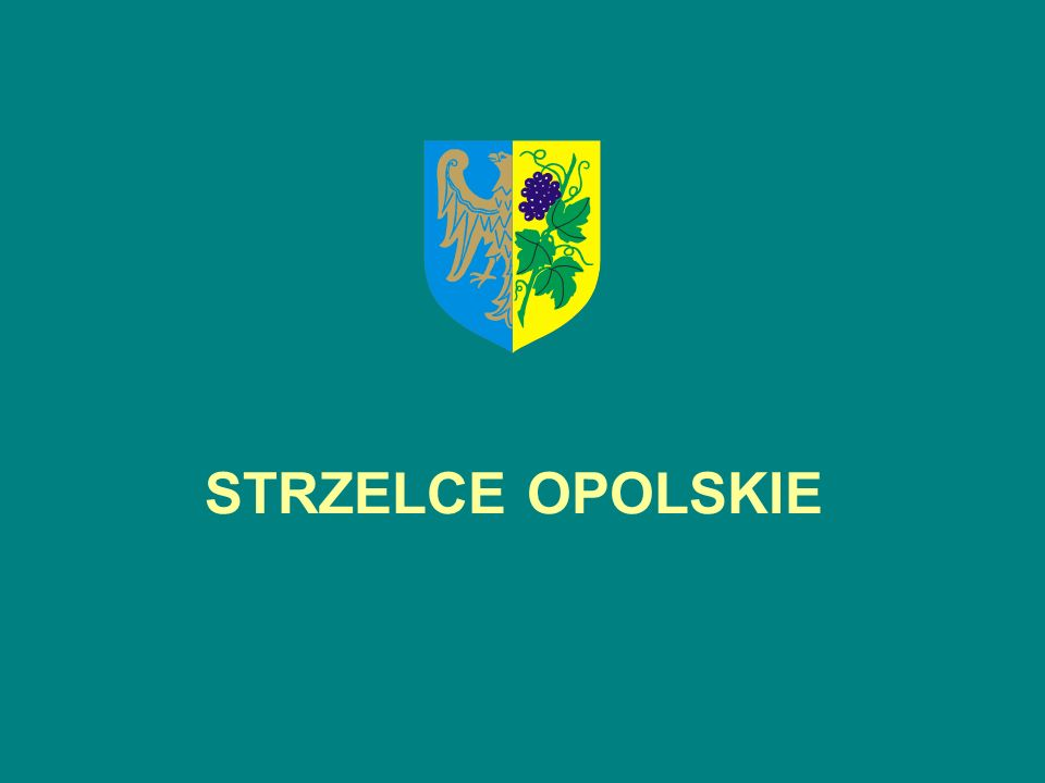 Opracowała i przygotowała: Joanna Hołobut Pełnomocnik Burmistrza ds.