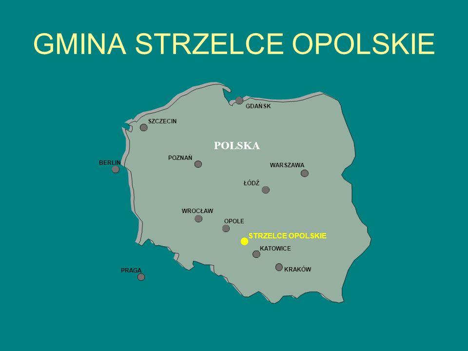 CHARAKTERYSTYKA GMINY Gmina Strzelce Opolskie liczy 33.125 mieszkańców, w tym miasto zamieszkuje 19.876 osób.