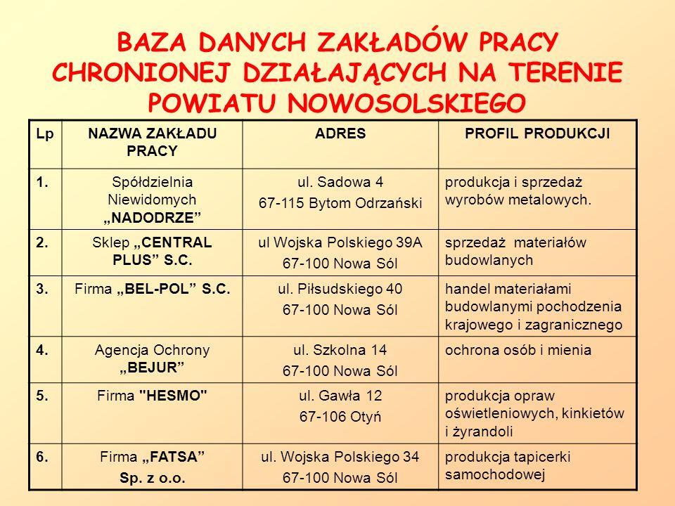 OŚRODEK INFORMACJI DLA OSÓB NIEPEŁNOSPRAWNYCH W NOWEJ SOLI PRACOWNICY: Magdalena Żachowska Marcin Mencel KONTAKT: tel.