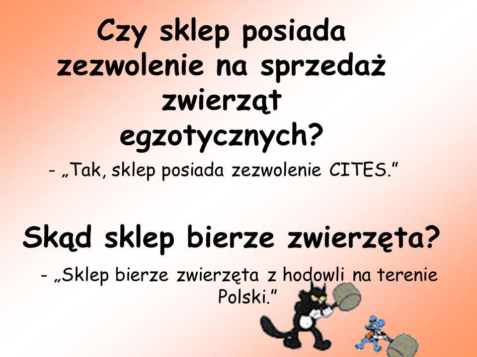 Skąd sklep bierze zwierzęta? - Sklep bierze zwierzęta z hodowli na terenie Polski. Czy sklep posiada zezwolenie na sprzedaż zwierząt egzotycznych? - T