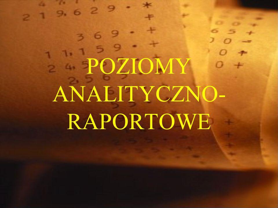 POZIOMY ANALITYCZNO- RAPORTOWE