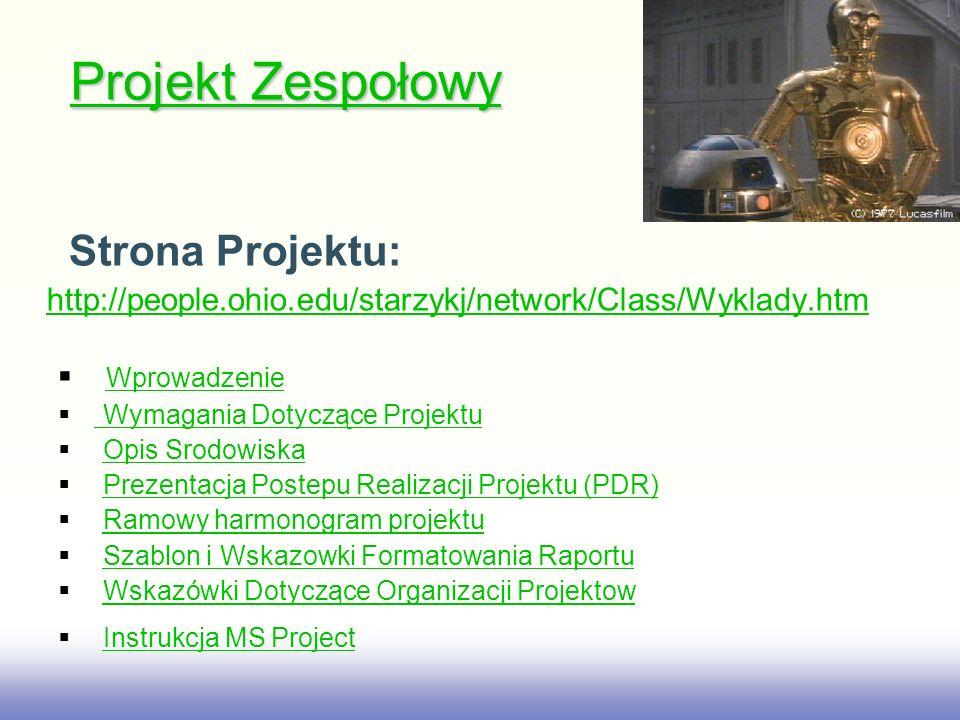 EE141 Prezentacja Kto Ma Przedstawić Raport.