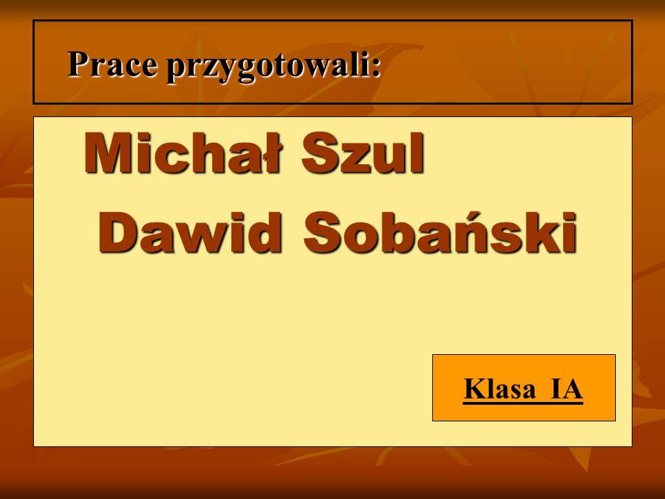 Prace przygotowali: Michał Szul Michał Szul Dawid Sobański Dawid Sobański Klasa IA