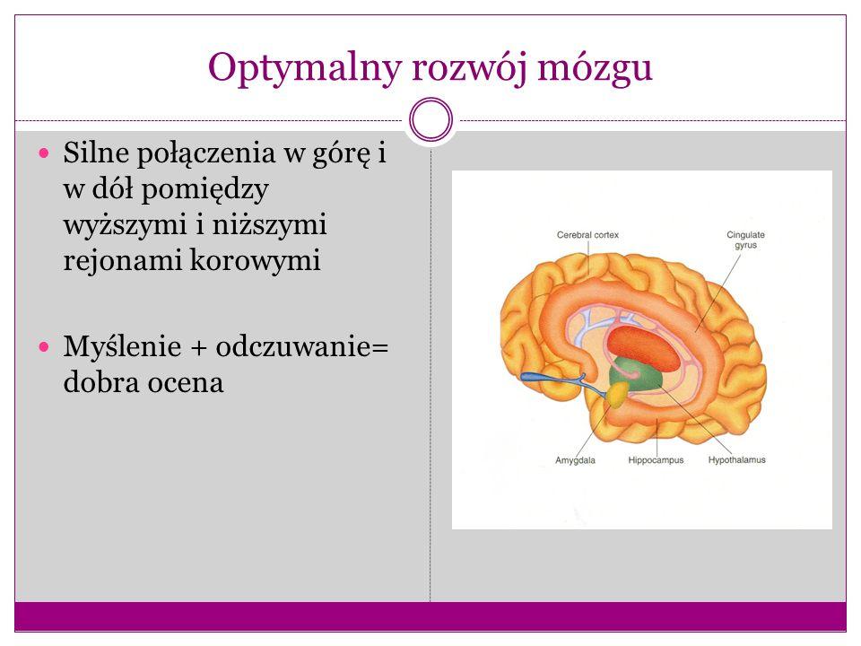 Optymalny rozwój mózgu Silne połączenia w górę i w dół pomiędzy wyższymi i niższymi rejonami korowymi Myślenie + odczuwanie= dobra ocena