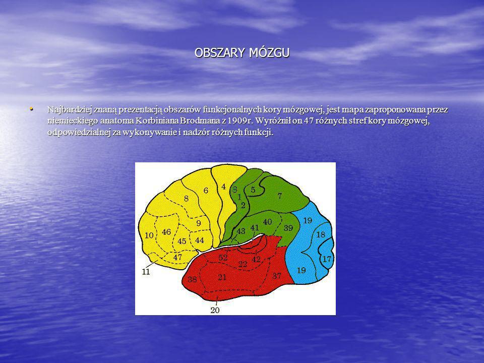 EEG Neurobiofeedback jest bezinwazyjną metodą diagnostyczno-terapeutyczną, polegającą na wzmacnianiu lub hamowaniu fal bioelektrycznych mózgu w pewnyc