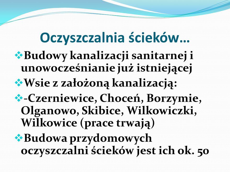 Przyroda… Zakup drzewek przy wsparciu z Wojewódzkiego Funduszu Ochrony Środowiska.