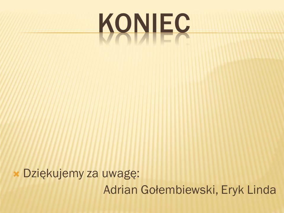 Dziękujemy za uwagę: Adrian Gołembiewski, Eryk Linda
