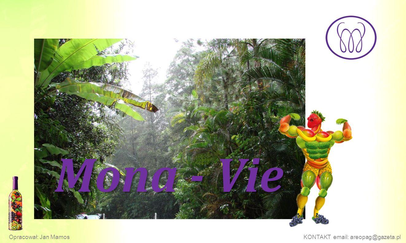 Mona - Vie Opracował: Jan MamosKONTAKT email: areopag@gazeta.pl