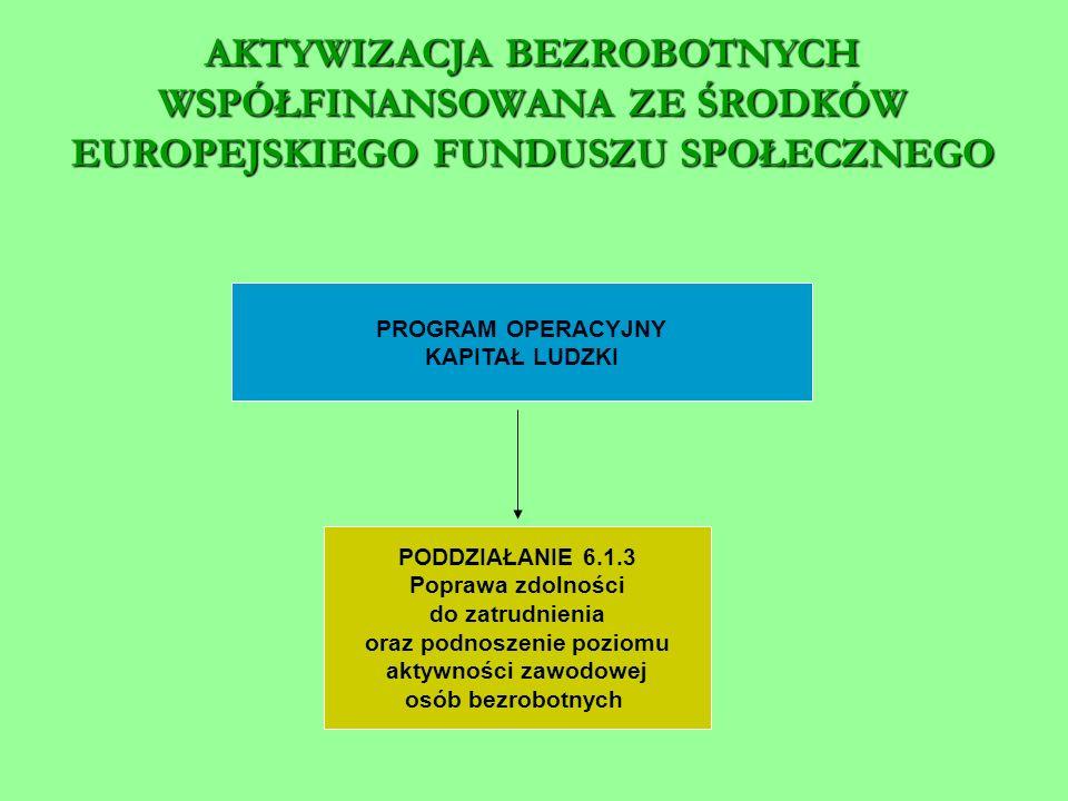 PROGRAM OPERACYJNY KAPITAŁ LUDZKI PODDZIAŁANIE 6.1.3 Poprawa zdolności do zatrudnienia oraz podnoszenie poziomu aktywności zawodowej osób bezrobotnych AKTYWIZACJA BEZROBOTNYCH WSPÓŁFINANSOWANA ZE ŚRODKÓW EUROPEJSKIEGO FUNDUSZU SPOŁECZNEGO