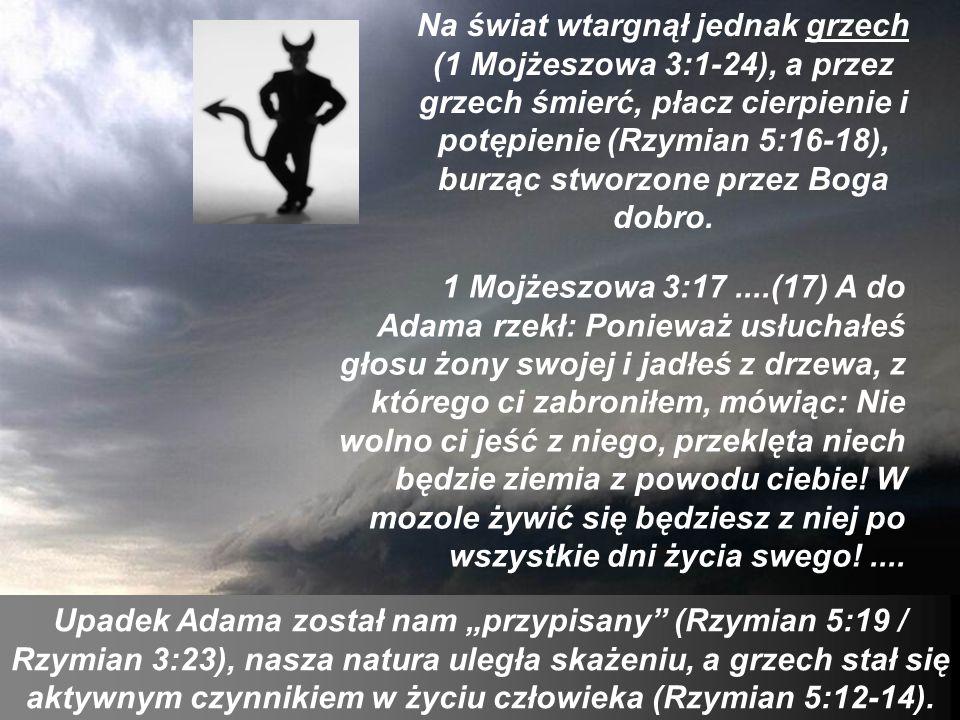 Na świat wtargnął jednak grzech (1 Mojżeszowa 3:1-24), a przez grzech śmierć, płacz cierpienie i potępienie (Rzymian 5:16-18), burząc stworzone przez Boga dobro.