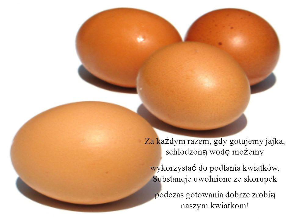 Za ka ż dym razem, gdy gotujemy jajka, schłodzon ą wod ę mo ż emy wykorzysta ć do podlania kwiatków. Substancje uwolnione ze skorupek podczas gotowani