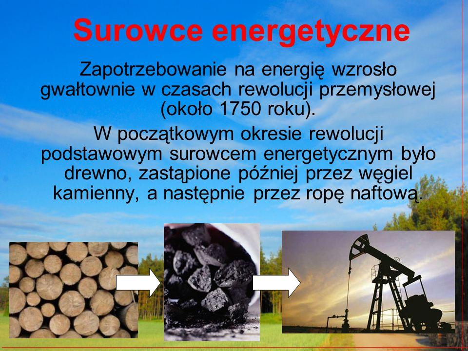 Od połowy ubiegłego stulecia gwałtownie zaczęło rosnąć znaczenie ropy naftowej i gazu ziemnego.