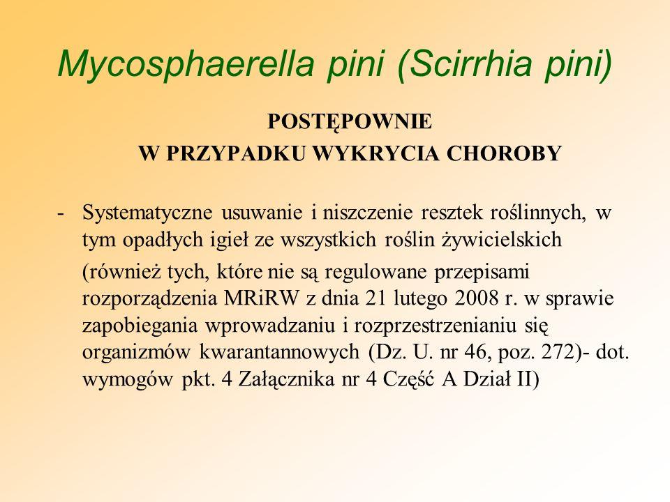 Mycosphaerella pini (Scirrhia pini) POSTĘPOWNIE W PRZYPADKU WYKRYCIA CHOROBY -Wzmożone kontrole zwrotności i prawidłowości prowadzenia przez podmiot ewidencji nabywanych i zbywanych roślin oraz przechowywania paszportów roślin dla materiału wyjściowego, wprowadzanego do miejsca produkcji -Podmiot ma obowiązek informowania inspektorów WIORiN o każdorazowym wprowadzaniu do szkółki roślin żywicielskich grzyba Mycosphaerella pini (Scirrhia pini) -Ograniczenie sztucznego nawadniania roślin podatnych, ze względu na możliwość przenoszenia zarodników konidialnych w kroplach wody
