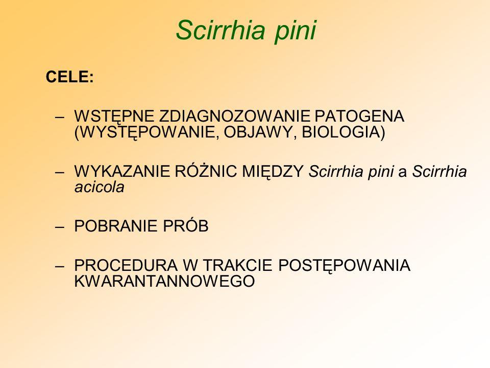 Scirrhia pini ROŚLINY ŻYWICIELSKIE: -WSZYSTKIE GATUNKI Z RODZAJU Pinus (SOSNY), -Picea glauca (MODRZEW EUROPEJSKI), -Larix decidua (ŚWIERK CITKAJSKI), -Pseudotsuga menziesii (DAGLEZJA ZIELONA), -GATUNKI Z RODZAJU Abies (JODŁA), JEŚLI ROSNĄ W SĄSIEDZTWIE SOSEN BARDZO PODATNYCH NA PATOGENA.