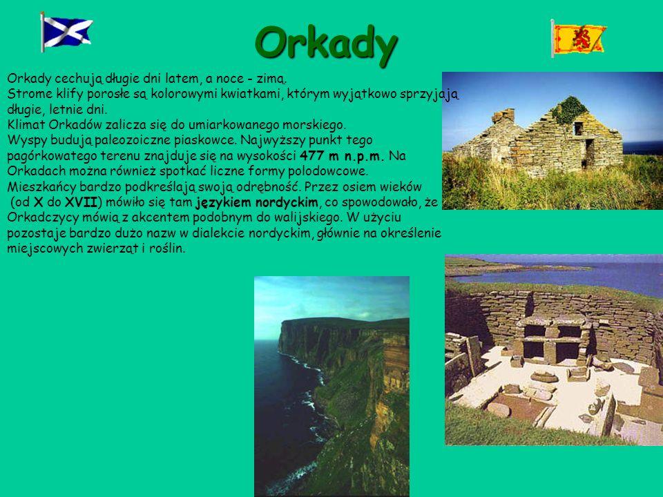 Orkady Orkady cechują długie dni latem, a noce - zimą.