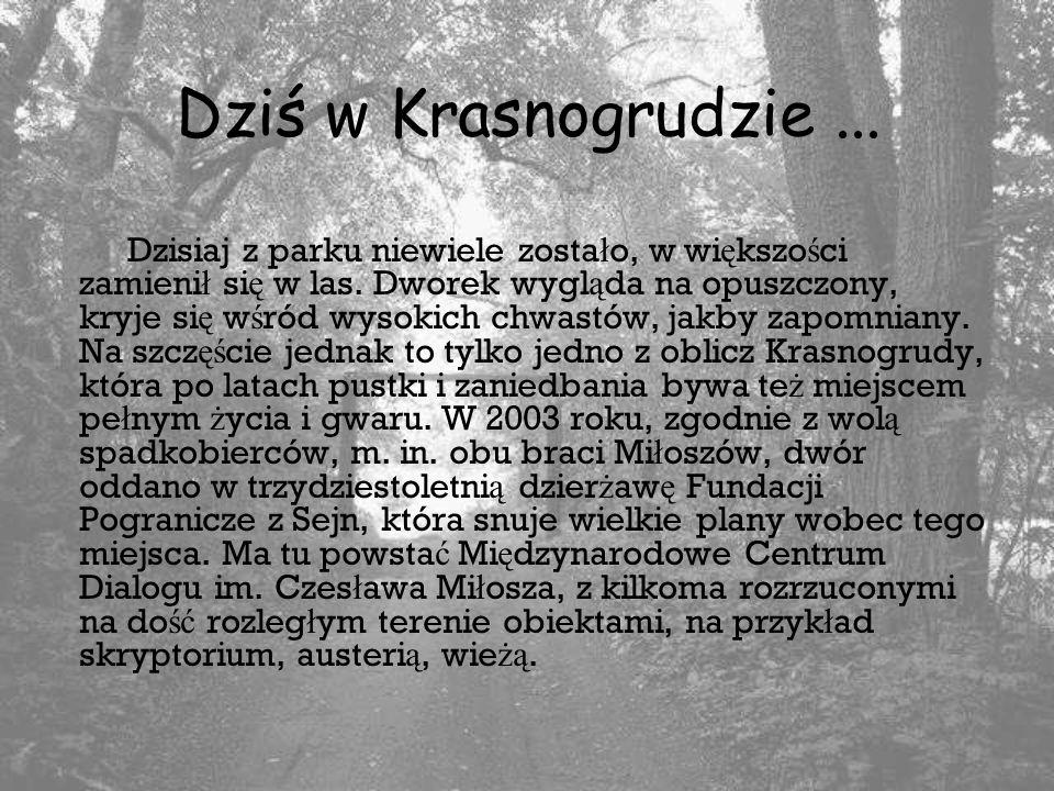 Dziś w Krasnogrudzie...Dzisiaj z parku niewiele zosta ł o, w wi ę kszo ś ci zamieni ł si ę w las.