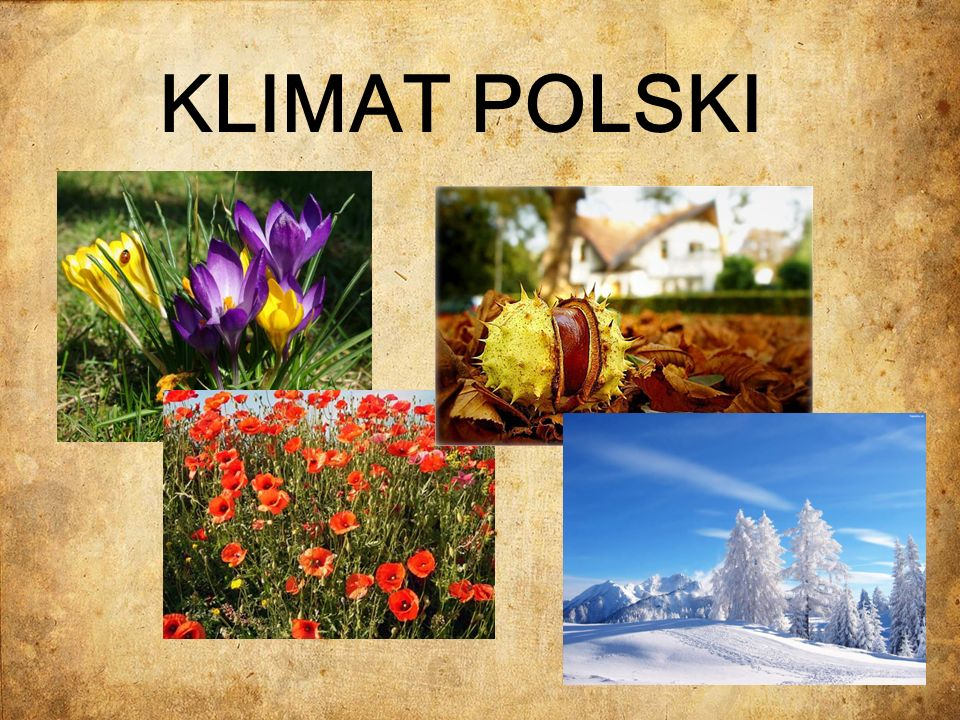 KLIMAT POLSKI-CHARAKTERYSTYKA mas powietrza Polska znajduje się strefie klimatu umiarkowanego o cechach przejściowych.
