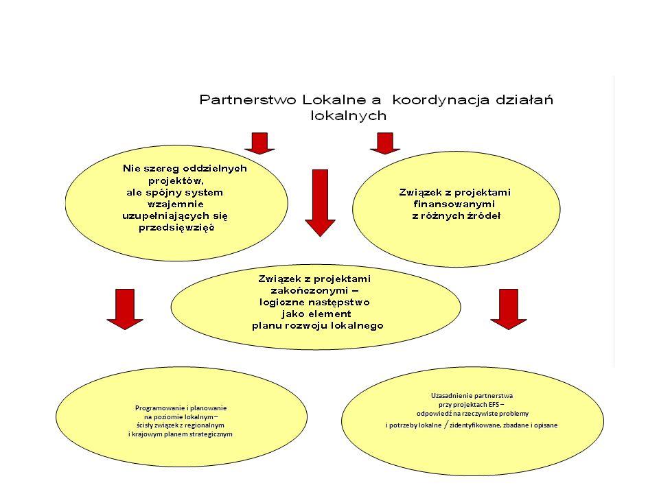 Uzasadnienie partnerstwa przy projektach EFS – odpowiedź na rzeczywiste problemy odpowiedź na rzeczywiste problemy i potrzeby lokalne / zidentyfikowan