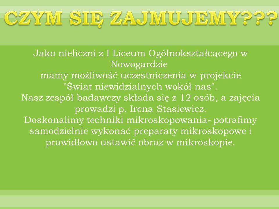 Jako nieliczni z I Liceum Ogólnokształcącego w Nowogardzie mamy możliwość uczestniczenia w projekcie