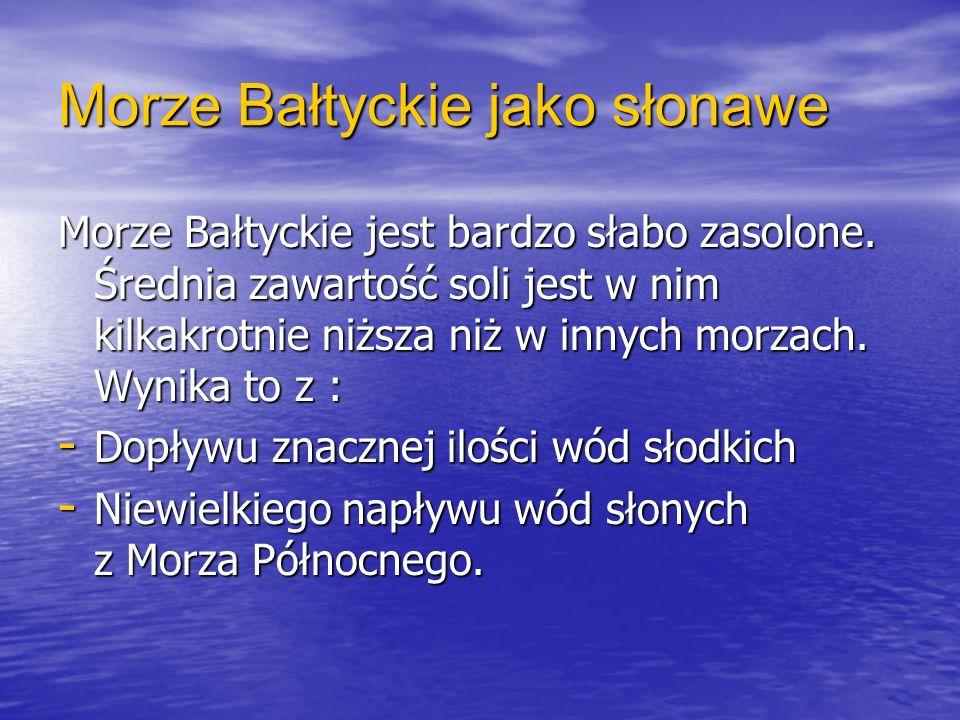Morze Bałtyckie jako słonawe Morze Bałtyckie jest bardzo słabo zasolone. Średnia zawartość soli jest w nim kilkakrotnie niższa niż w innych morzach. W