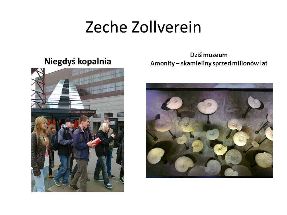 Zeche Zollverein Niegdyś kopalnia Dziś muzeum Amonity – skamieliny sprzed milionów lat