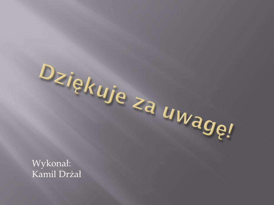 Wykonał: Kamil Drżał
