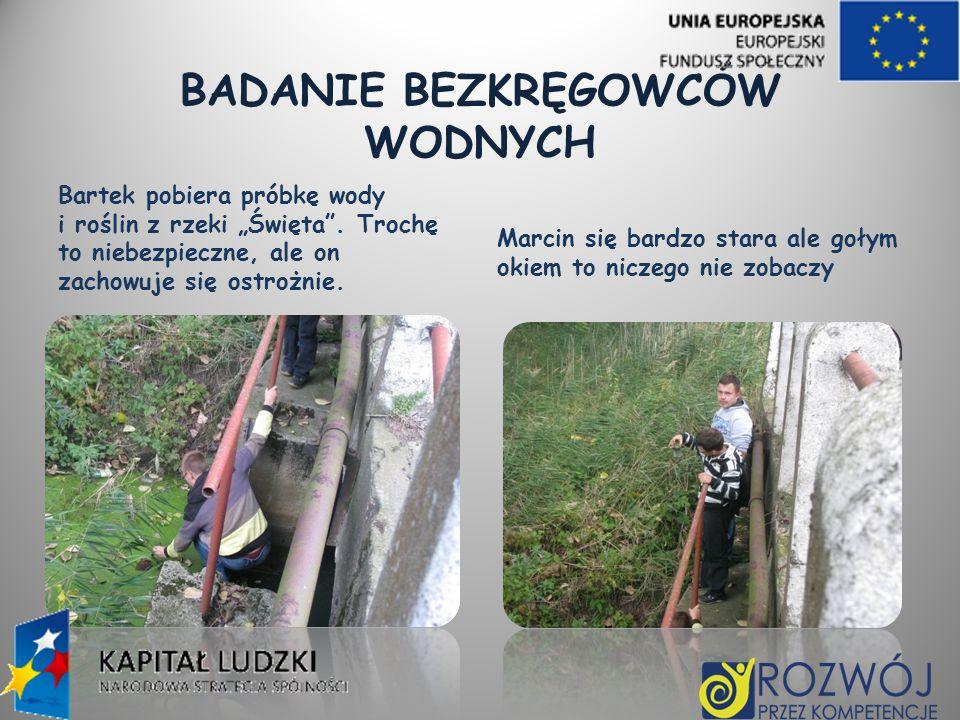 BADANIE BEZKRĘGOWCÓW WODNYCH Bartek pobiera próbkę wody i roślin z rzeki Święta. Trochę to niebezpieczne, ale on zachowuje się ostrożnie. Marcin się b