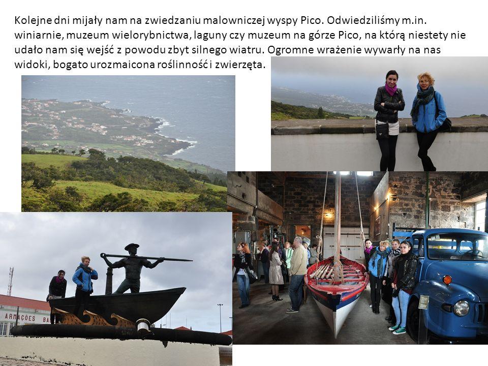 Kolejne dni mijały nam na zwiedzaniu malowniczej wyspy Pico.