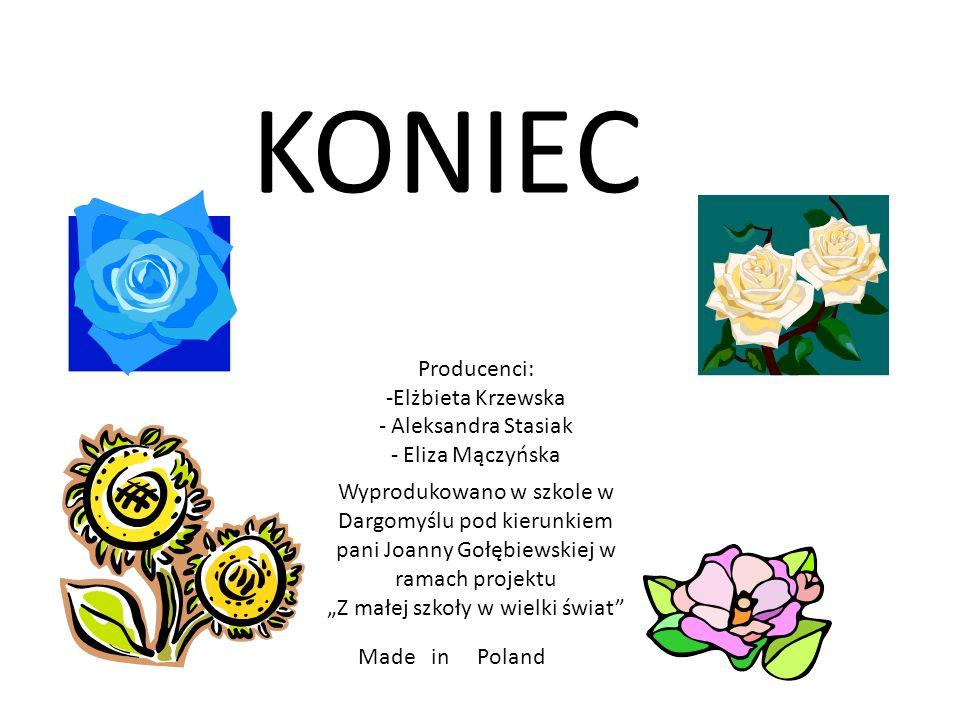 KONIEC Producenci: -Elżbieta Krzewska - Aleksandra Stasiak - Eliza Mączyńska Made in Poland Wyprodukowano w szkole w Dargomyślu pod kierunkiem pani Jo
