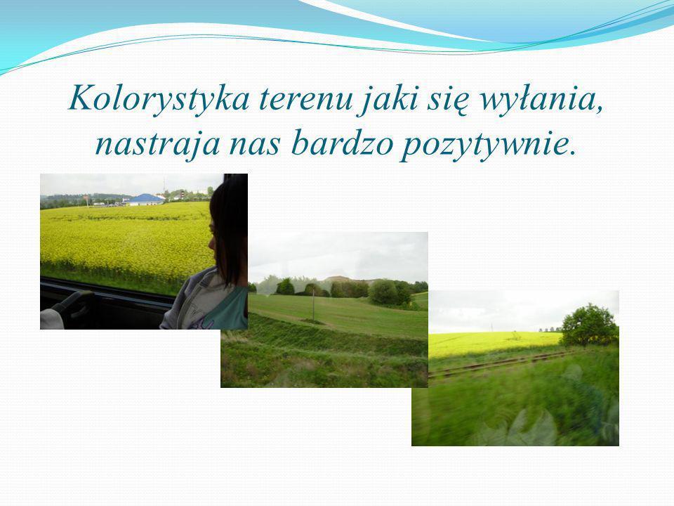 Kolorystyka terenu jaki się wyłania, nastraja nas bardzo pozytywnie.
