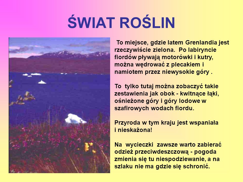 ŚWIAT ROŚLIN To miejsce, gdzie latem Grenlandia jest rzeczywiście zielona. Po labiryncie fiordów pływają motorówki i kutry, można wędrować z plecakiem