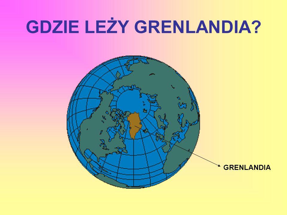 GRENLANDIA TO WIELKA POLARNA WYSPA NA PÓŁNOCNYM ATLANTYKU. WIĘKSZA CZĘŚĆ LĄDU POKRYTA JEST LODEM.