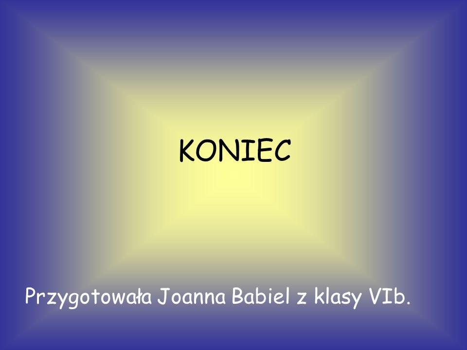 Przygotowała Joanna Babiel z klasy VIb. KONIEC