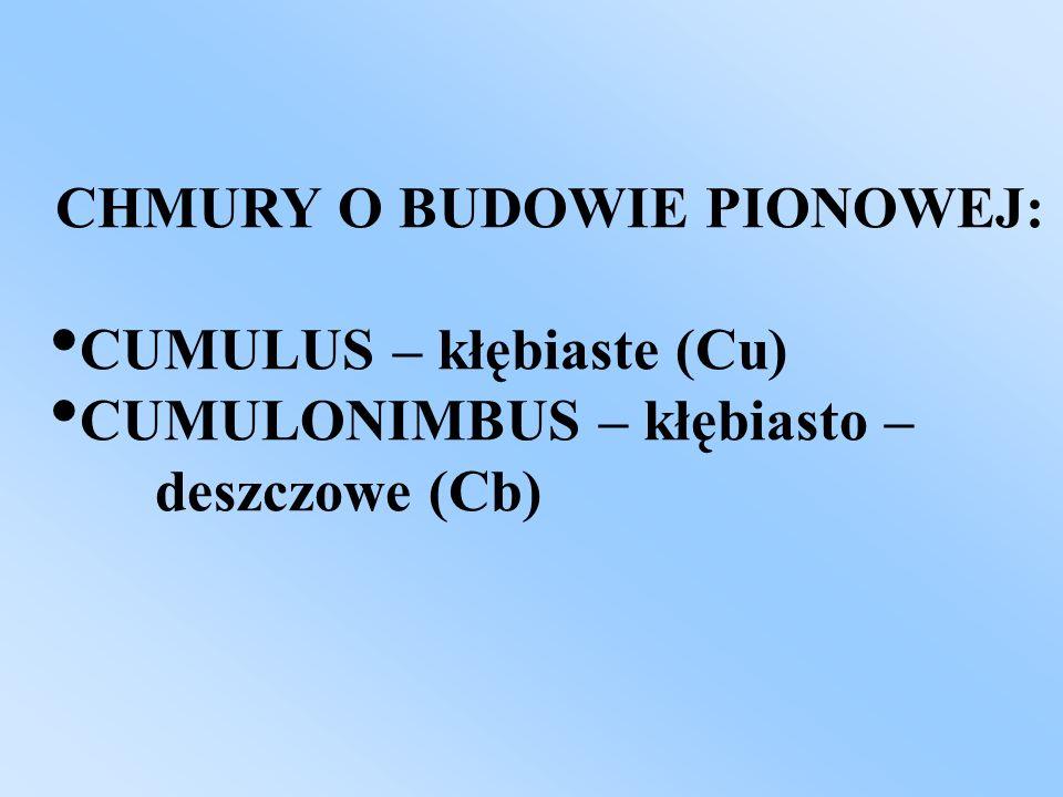 CHMURY O BUDOWIE PIONOWEJ: CUMULUS – kłębiaste (Cu) CUMULONIMBUS – kłębiasto – deszczowe (Cb)
