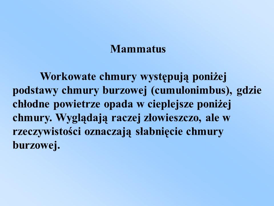 Mammatus Workowate chmury występują poniżej podstawy chmury burzowej (cumulonimbus), gdzie chłodne powietrze opada w cieplejsze poniżej chmury. Wygląd