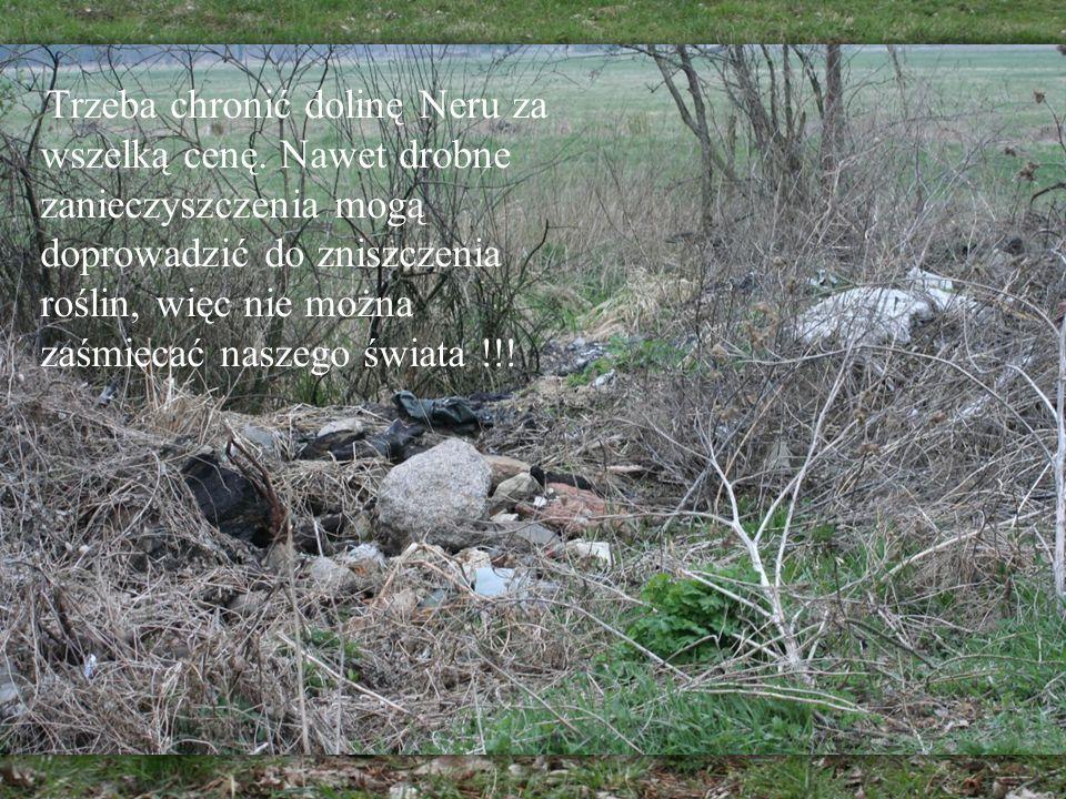 Trzeba chronić dolinę Neru za wszelką cenę. Nawet drobne zanieczyszczenia mogą doprowadzić do zniszczenia roślin, więc nie można zaśmiecać naszego świ
