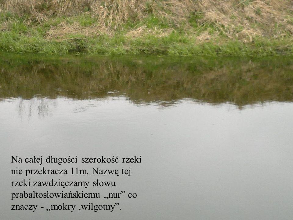 Na całej długości szerokość rzeki nie przekracza 11m. Nazwę tej rzeki zawdzięczamy słowu prabałtosłowiańskiemu nur co znaczy - mokry,wilgotny.