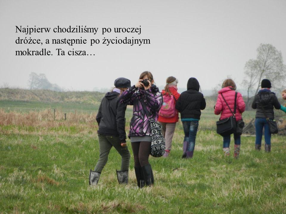 Najpierw chodziliśmy po uroczej dróżce, a następnie po życiodajnym mokradle. Ta cisza…