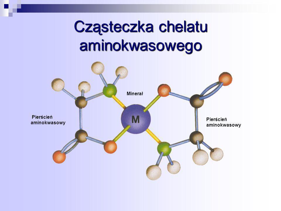 Cząsteczka chelatu aminokwasowego Pierścień aminokwasowy Minerał Pierścień aminokwasowy
