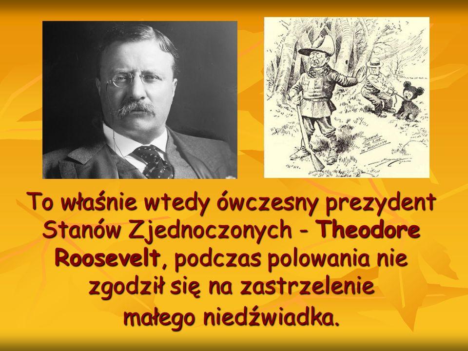 To właśnie wtedy ówczesny prezydent Stanów Zjednoczonych - Theodore Roosevelt, podczas polowania nie zgodził się na zastrzelenie małego niedźwiadka.