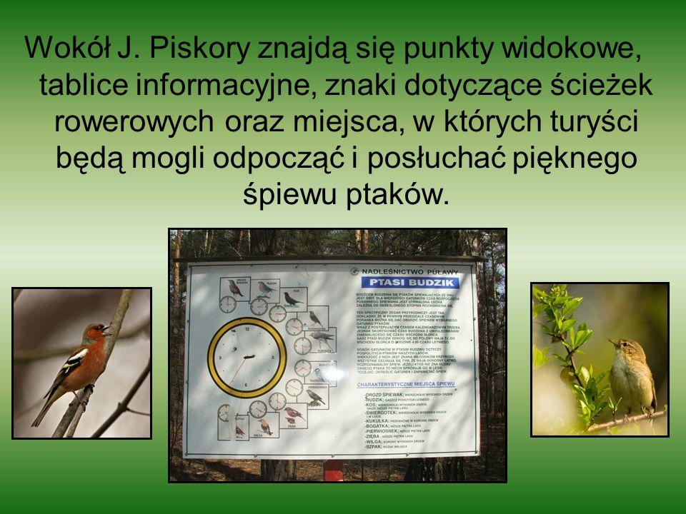 Wokół J. Piskory znajdą się punkty widokowe, tablice informacyjne, znaki dotyczące ścieżek rowerowych oraz miejsca, w których turyści będą mogli odpoc