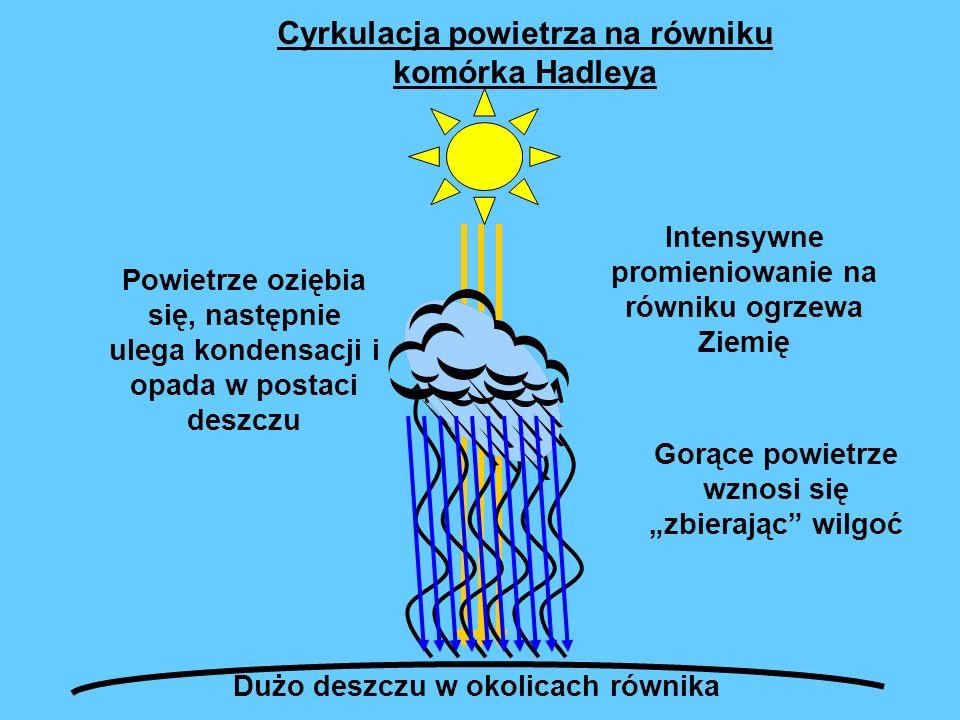 Intensywne promieniowanie na równiku ogrzewa Ziemię Gorące powietrze wznosi się zbierając wilgoć Powietrze oziębia się, następnie ulega kondensacji i opada w postaci deszczu Dużo deszczu w okolicach równika Cyrkulacja powietrza na równiku komórka Hadleya