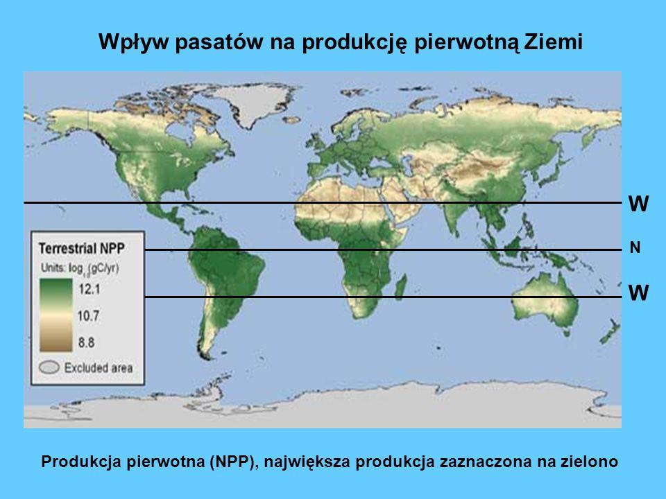 Produkcja pierwotna (NPP), największa produkcja zaznaczona na zielono Wpływ pasatów na produkcję pierwotną Ziemi N W W